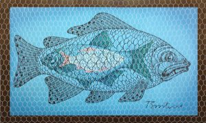 01_fish in fishing net